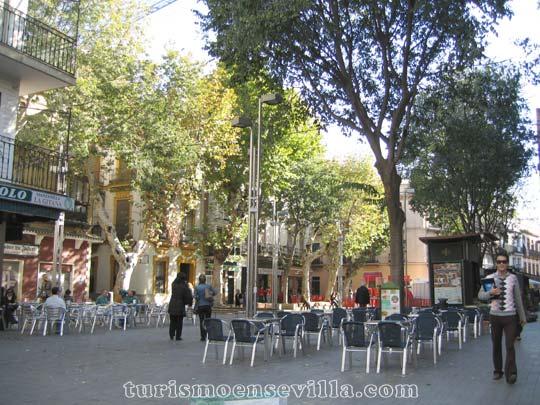 Plaza de la Alfalfa con mesas y sillas de algunos bares