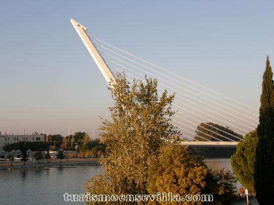 El puente del Alamillo